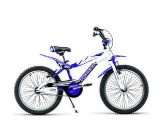 Bicicleta Rodado 20 Raleigh Aluminio (varón/nena)